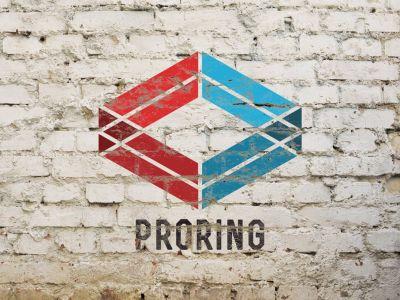 proring.com branding by Nameloft