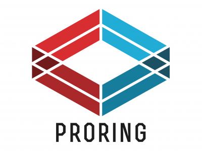 proring.com